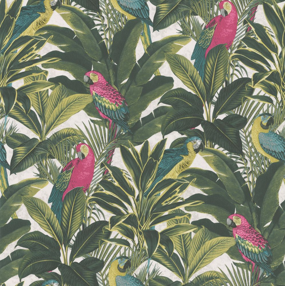 Parrots & Palms Pink, Green & White wallpaper by Albany