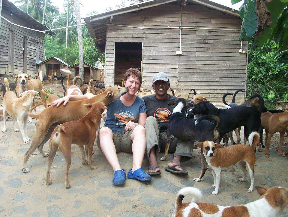 "Enjoying large groups of ""shelter dogs"" at Animal SOS"