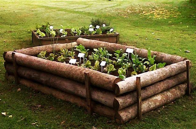 Construcción De Una Huerta Y Gráfico Con Consejos útiles Jardín De Vegetales Ideas De Jardinería Huerta