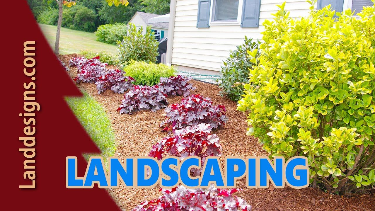Foundation Landscaping Ideas Zone 5 Google Search Garden