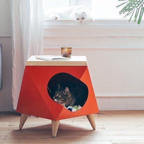 Casa Animal Casa Animal Instagram Photos And Videos In 2020 Cat Accessories Pet Pet Furniture Cat Decor