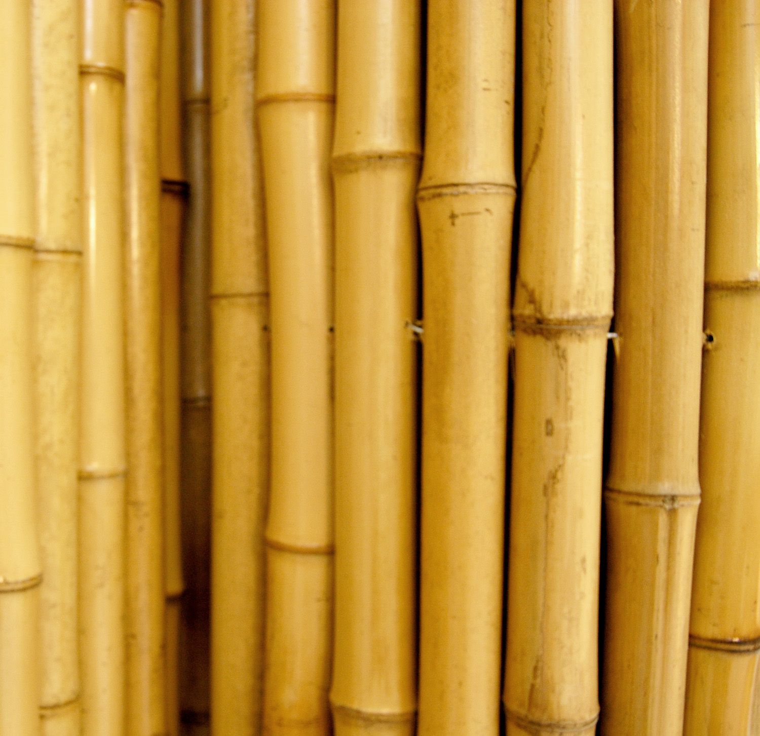 Store For Texture Crafts In 2019 Bamboo Texture Wood