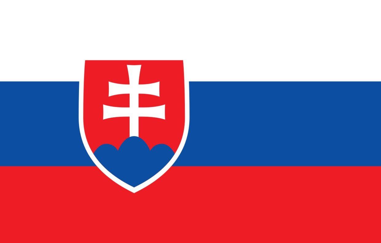 Flag Of Slovakia Slovakia Flag Flag Flags Of The World