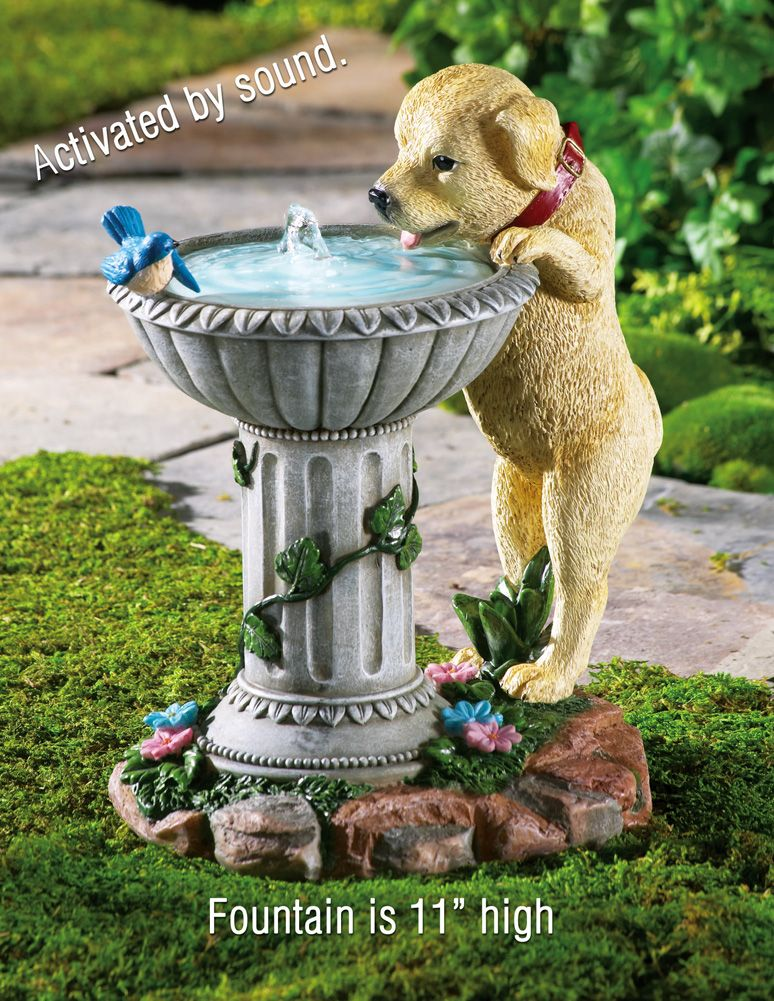Playful Puppy Birdbath Garden Fountain Bird Bath Garden Garden