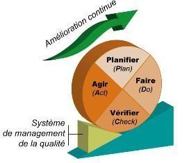 Organisation Du Systeme De La Qualite Biolor Laboratoire De Management De Projet Projet Informatique Demarche Qualite