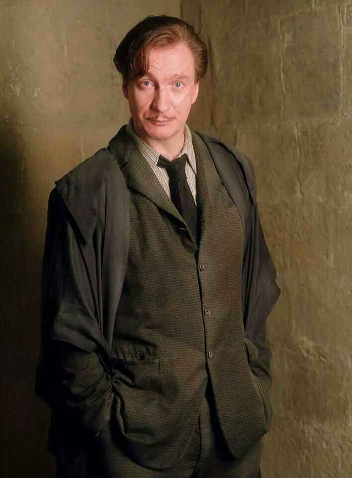 Remus Lupin Lupin Harry Potter Harry Potter Characters Harry Potter Wiki