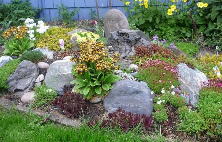Rocaille jardin - conseils de construction et photos inspirantes ...