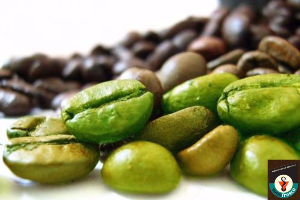Pin on Coffee Green Beans