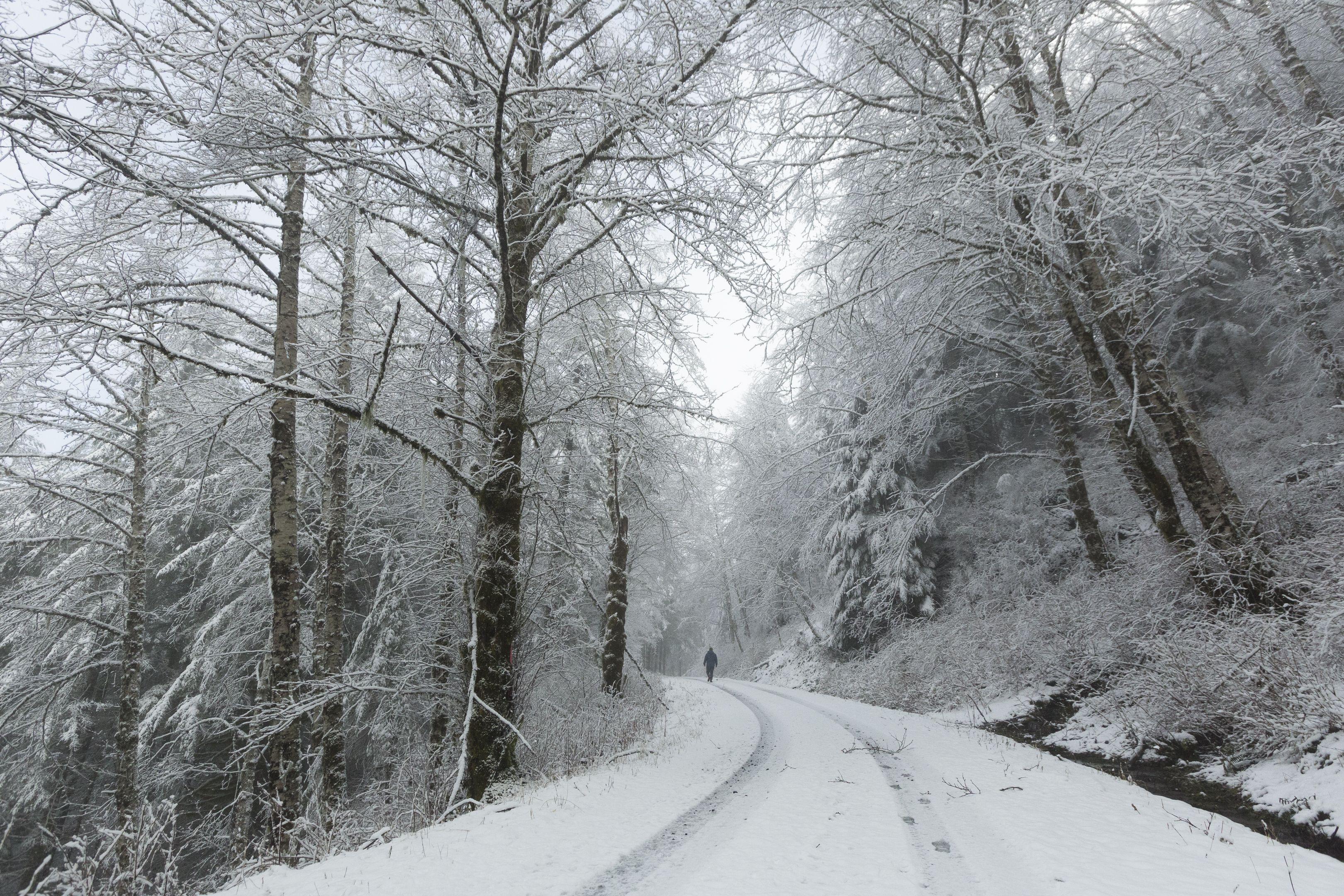 One Of Those Snowy Days On The Tillamook Coast