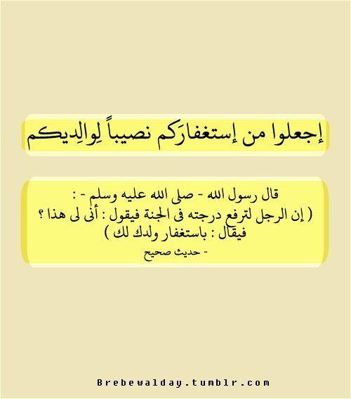 بر الوالدين ليس مناوبات وظيفية بينك وبين اخوانك بل مزاحمات على أبواب الجنة Quran Verses Words Funny Quotes