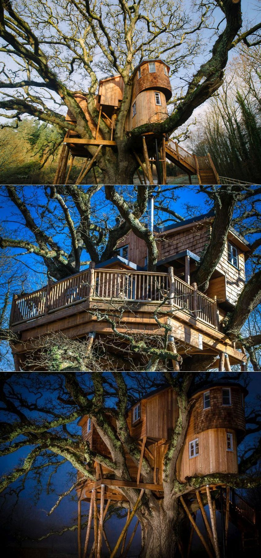 You must experience this ultimate #treehouse built on a 250-year-old oak tree in the compound of the Fox Hounds Hotel in Devon, UK. The treehouse resort marvelously nestled six meters above the ground & equipped with all luxurious facilities. #treehousehotel #treehouseresort #besttreehouse