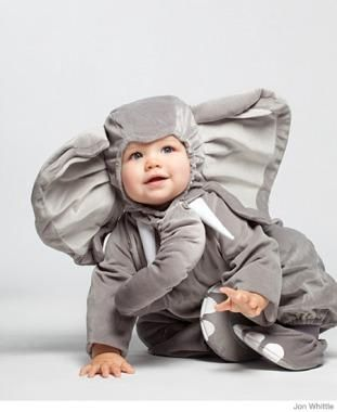Chubby Baby Halloween Costumes.Pin On Holidays