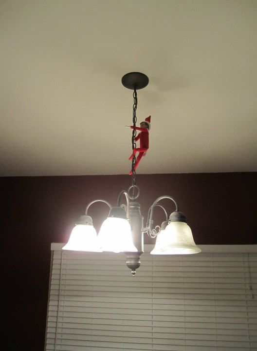 Elf on the Shelf pictures - Page 11