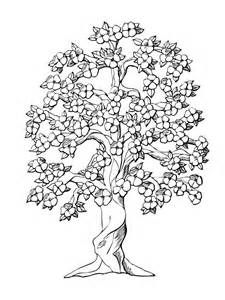 Trees Adult Coloring Pages - Bing images | ausmalbilder | Tree ...