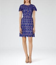 Résultats de recherche d'images pour «preen by thornton bregazzi dress»