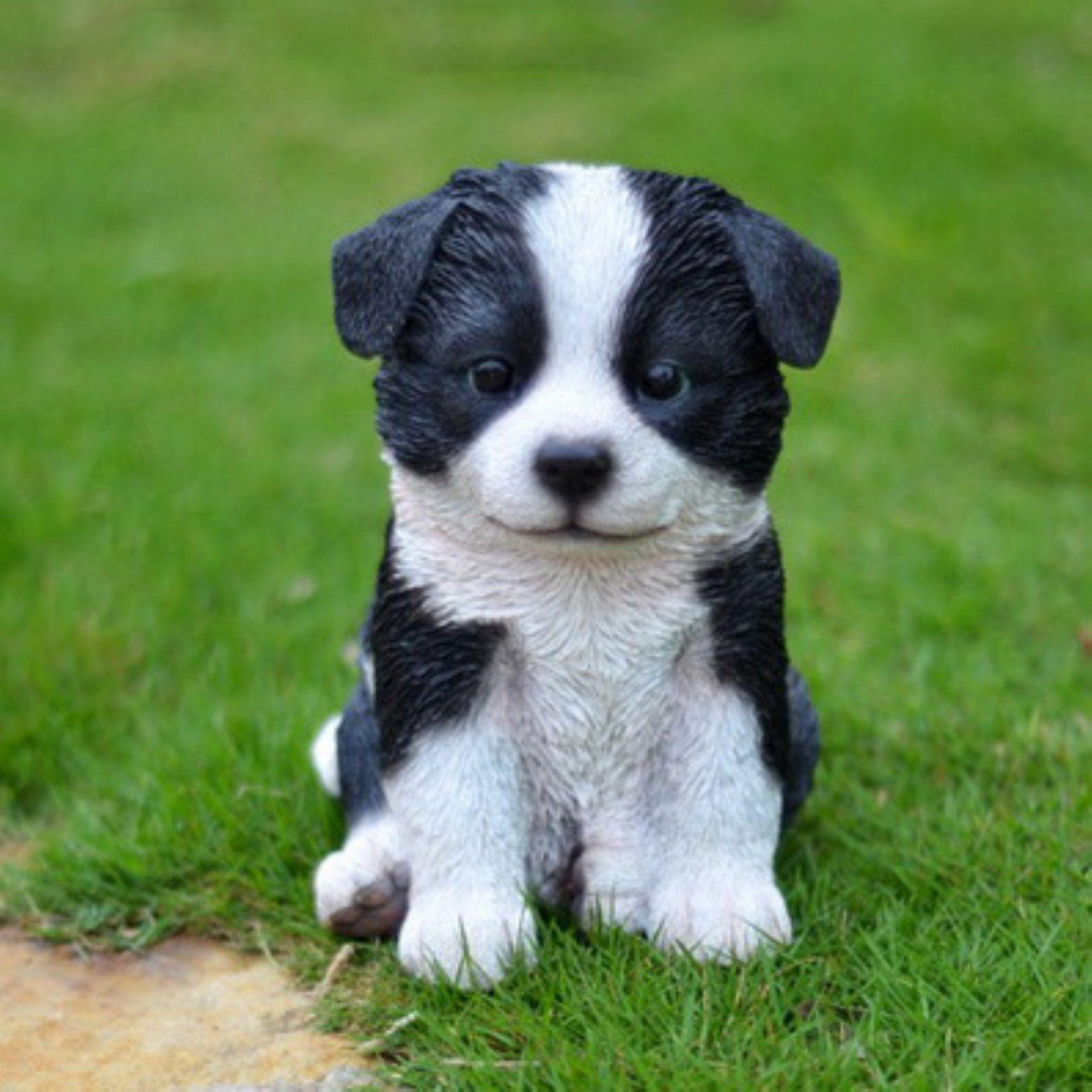 Hi Line Gift Ltd Sitting Border Collie Puppy Garden Statue