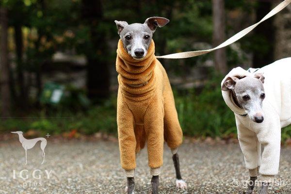 Iggyplus Gomafish Rompers Extra Heat Caramel Italian Greyhound Clothes Dog Coats Italian Greyhound