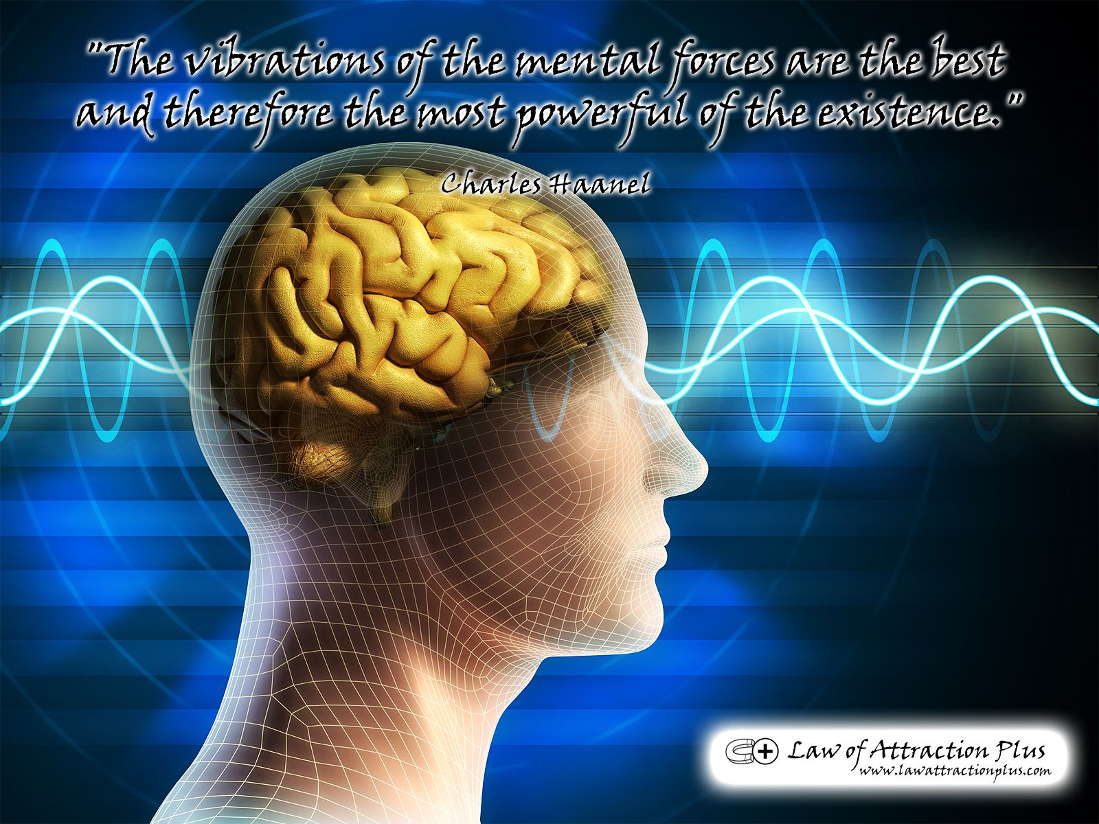 Law Of Attraction Quotes Free Wallpapers With Law Of Attraction Quotes Part 1  Law Of