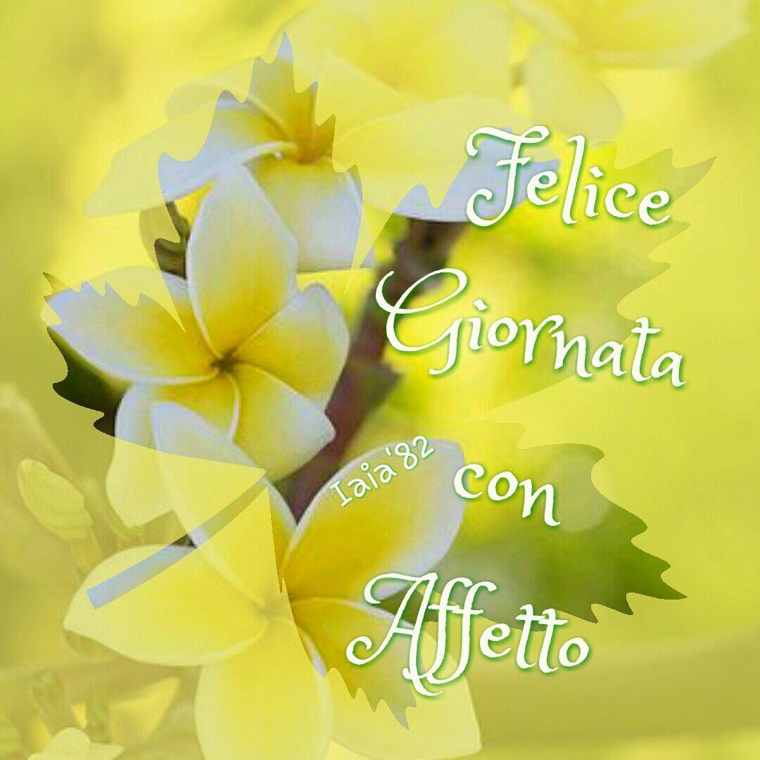 Felice Giornata Con Affetto Buongiorno Immagini Immagini