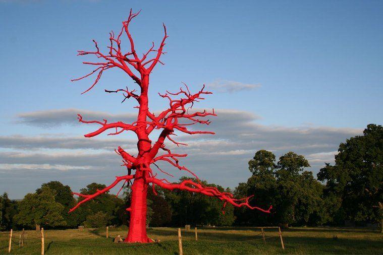 Seeing Red Land art, Art, New art