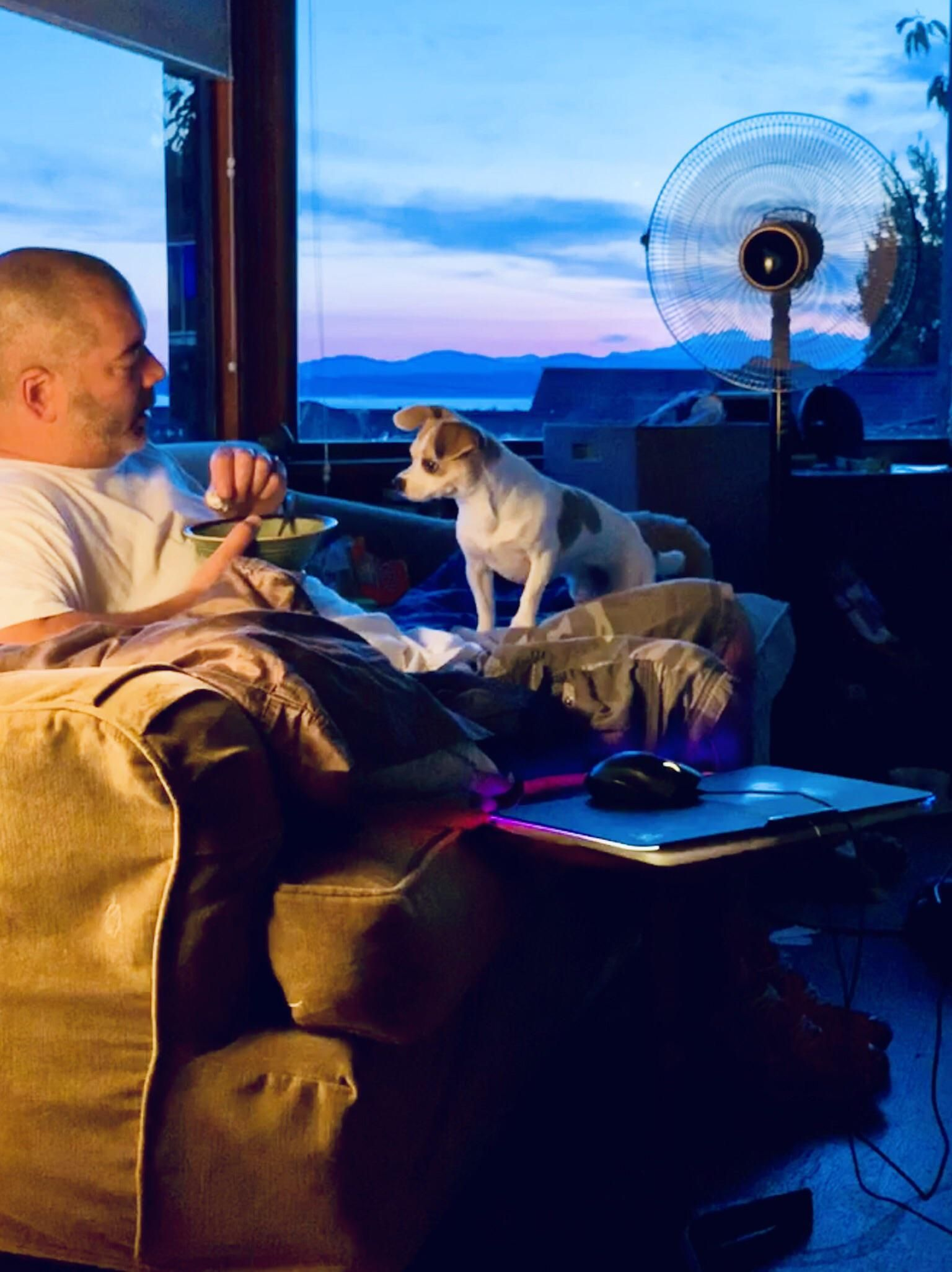 My living room. Seattle. Love pet, Cute pictures, Louie