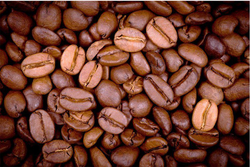 Giá cà phê hôm nay 12/7 Tiếp tục giảm nhẹ 100 đồng/kg