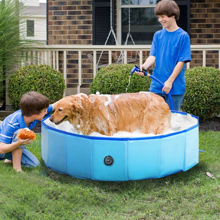 6 Reliance Foldable Dog Swimming Pool And Bath Tub Dog Swimming Pools Dog Pool Dog Bath Tub