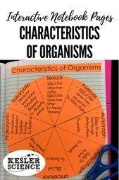 Unique properties of wheel organisms reinforces vocabulary including ...  #including #organisms #properties #reinforces #unique #vocabulary #wheel