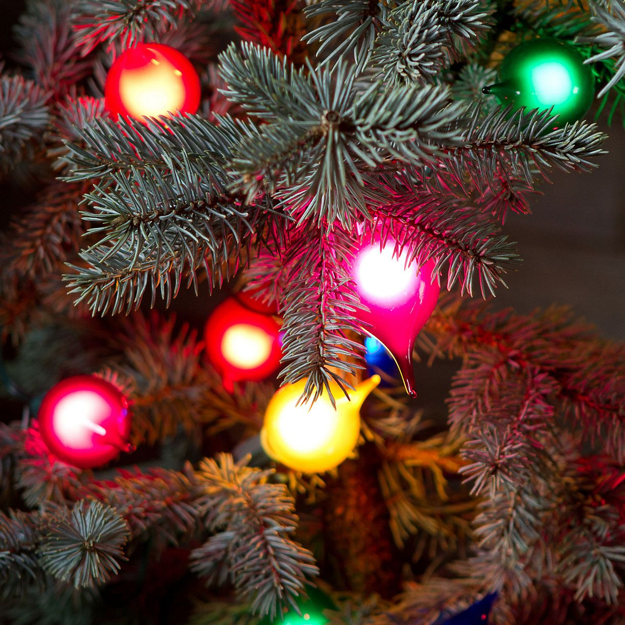 Festive Teardrop Light Set in Holiday Collections Doorstep Decorating at Terrain