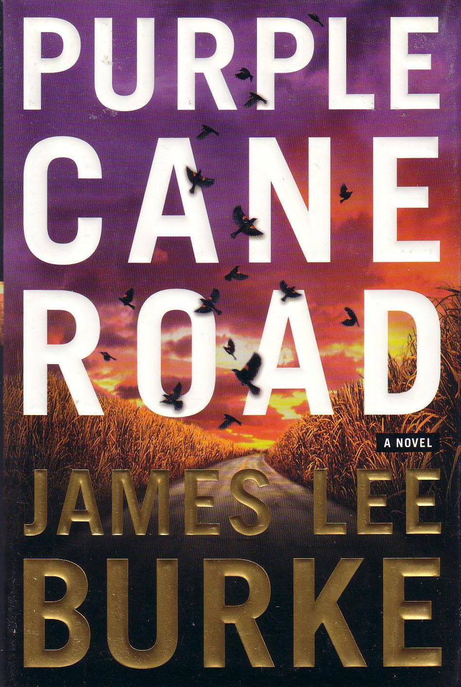 Find This Pin And More On Colorful Books Purple Cane Road (dave Robicheaux