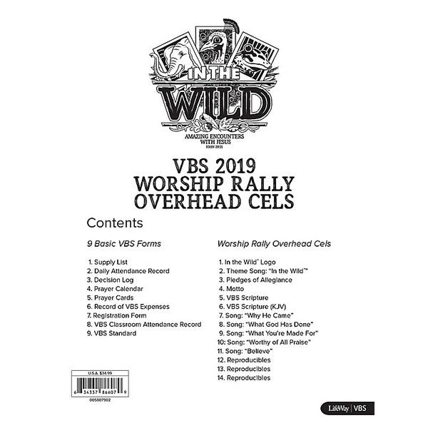 Worship Rally Overhead Cels - In The Wild VBS by LifeWay | In the