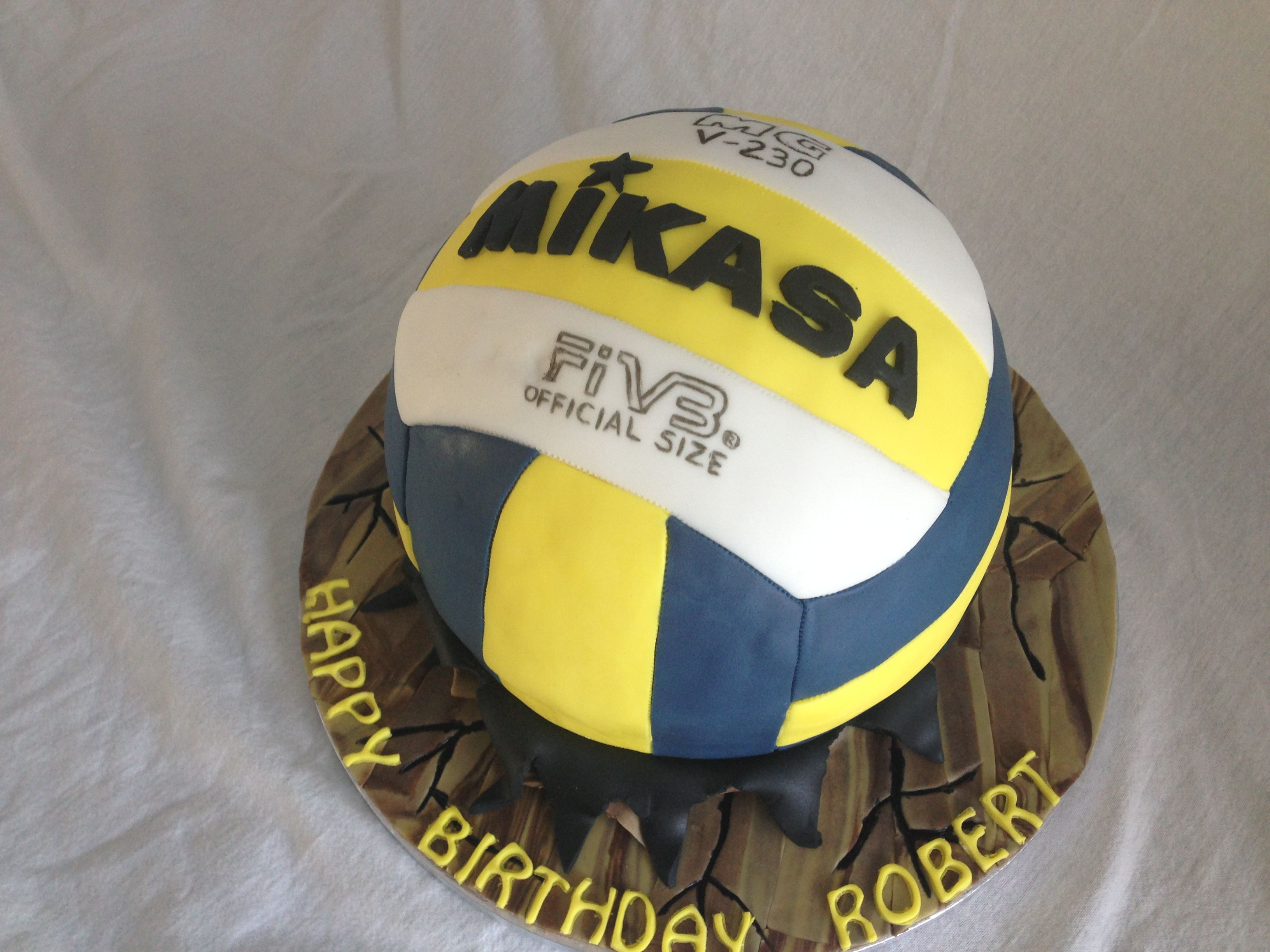 Mikasa Volleyball Cake