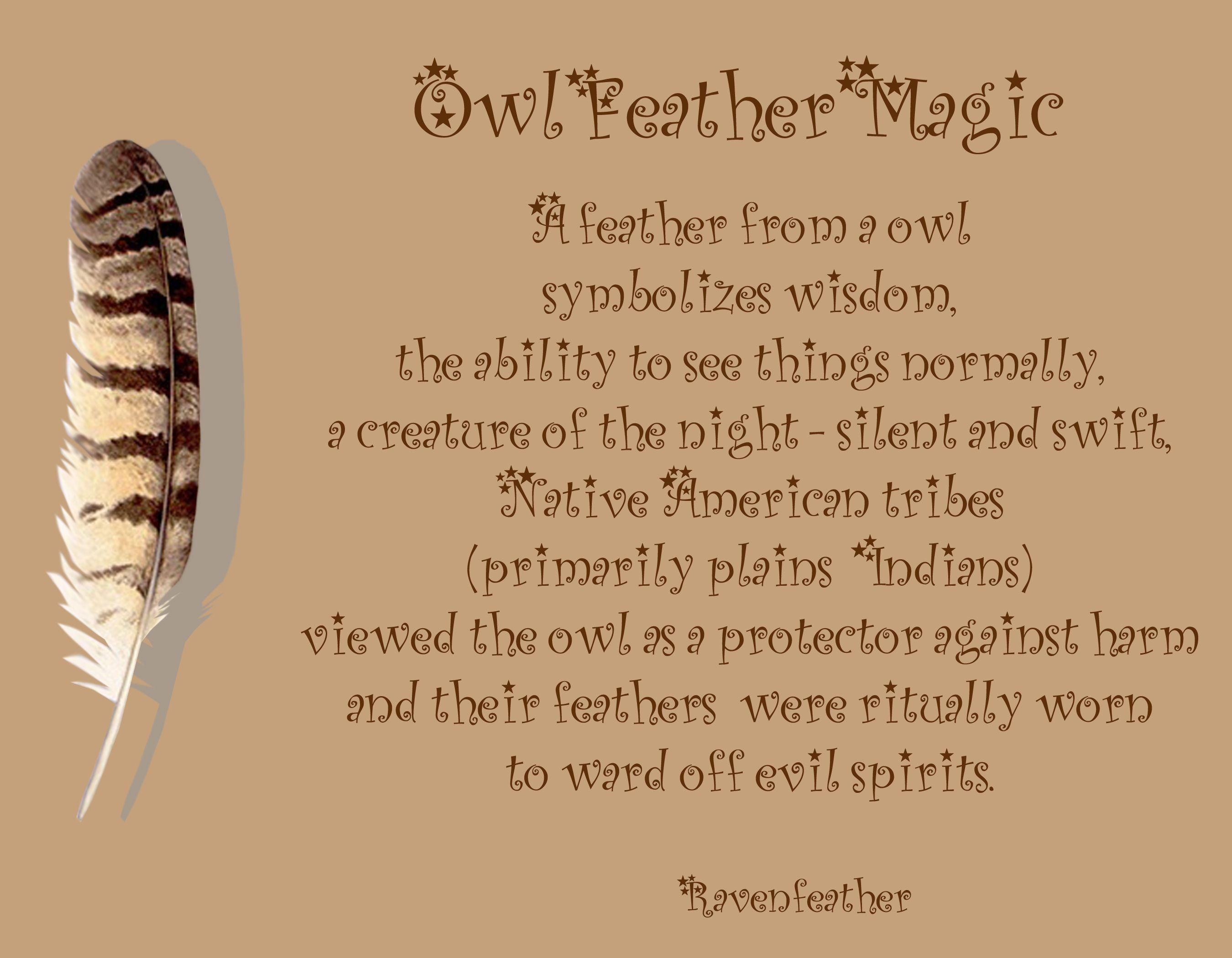 Owl Feather Magic Native Pinte