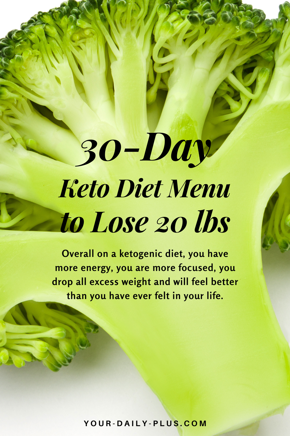 Pin By Aileen Vigo Mayo On Keto Diet In 2020 Ketogenic Diet Meal Plan Ketogenic Diet For Beginners Keto Diet Menu