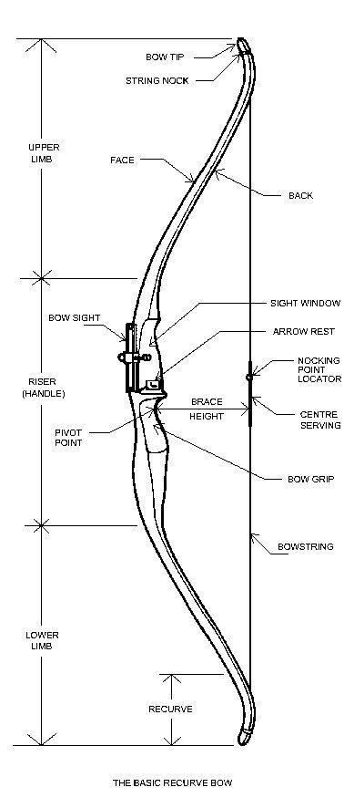Anatomy of a Recurve | woodwork.my | Pinterest | Anatomy, Archery ...