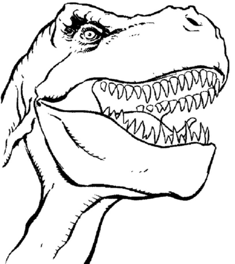 tyrannosaurus rex head coloring pages  dinosaur coloring