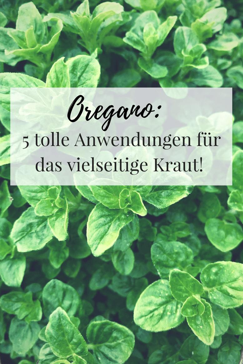 Oregano: Warum das Kraut im Garten nicht fehlen darf!