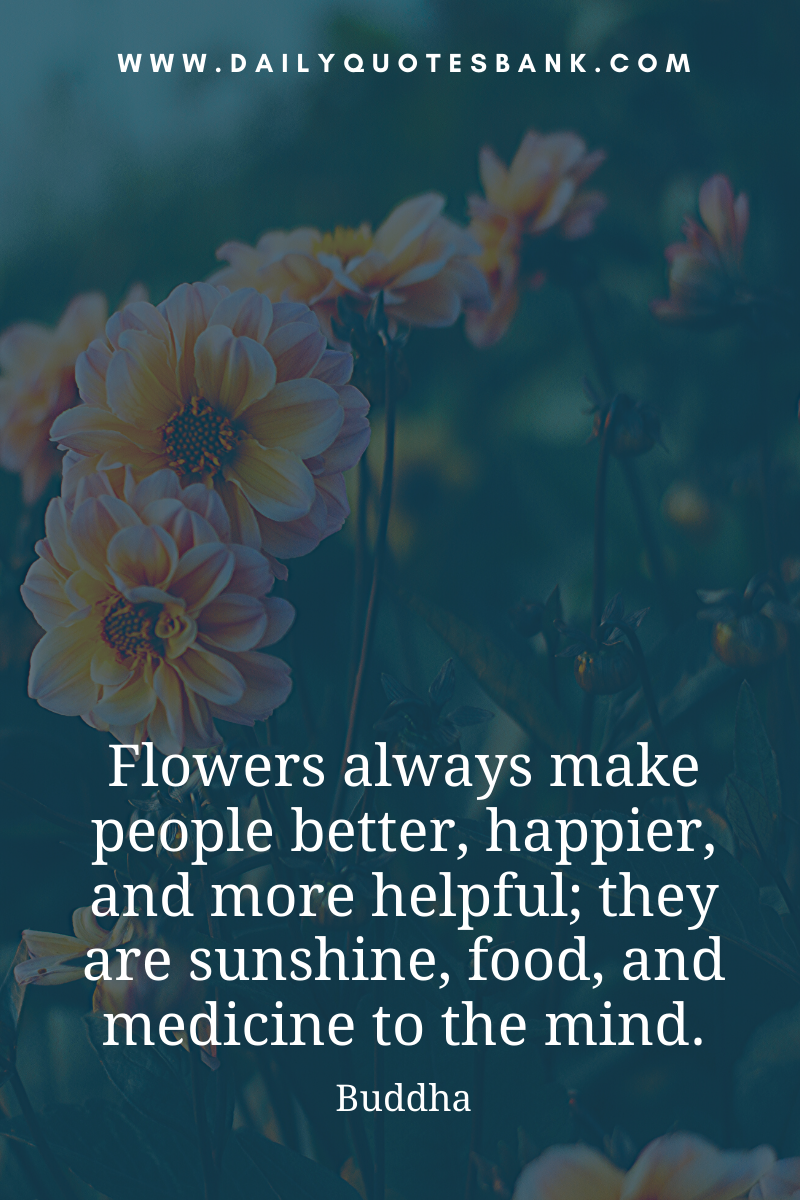 Flower Quotes About Love Life Wisdom Friend Family Happiness Garden Dream And Philoso Flower Quotes Beautiful Flower Quotes Flower Quotes Inspirational
