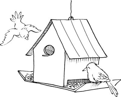 How To Make Bird Feeders Bird Coloring Pages Bird Feeders Bird House Kits