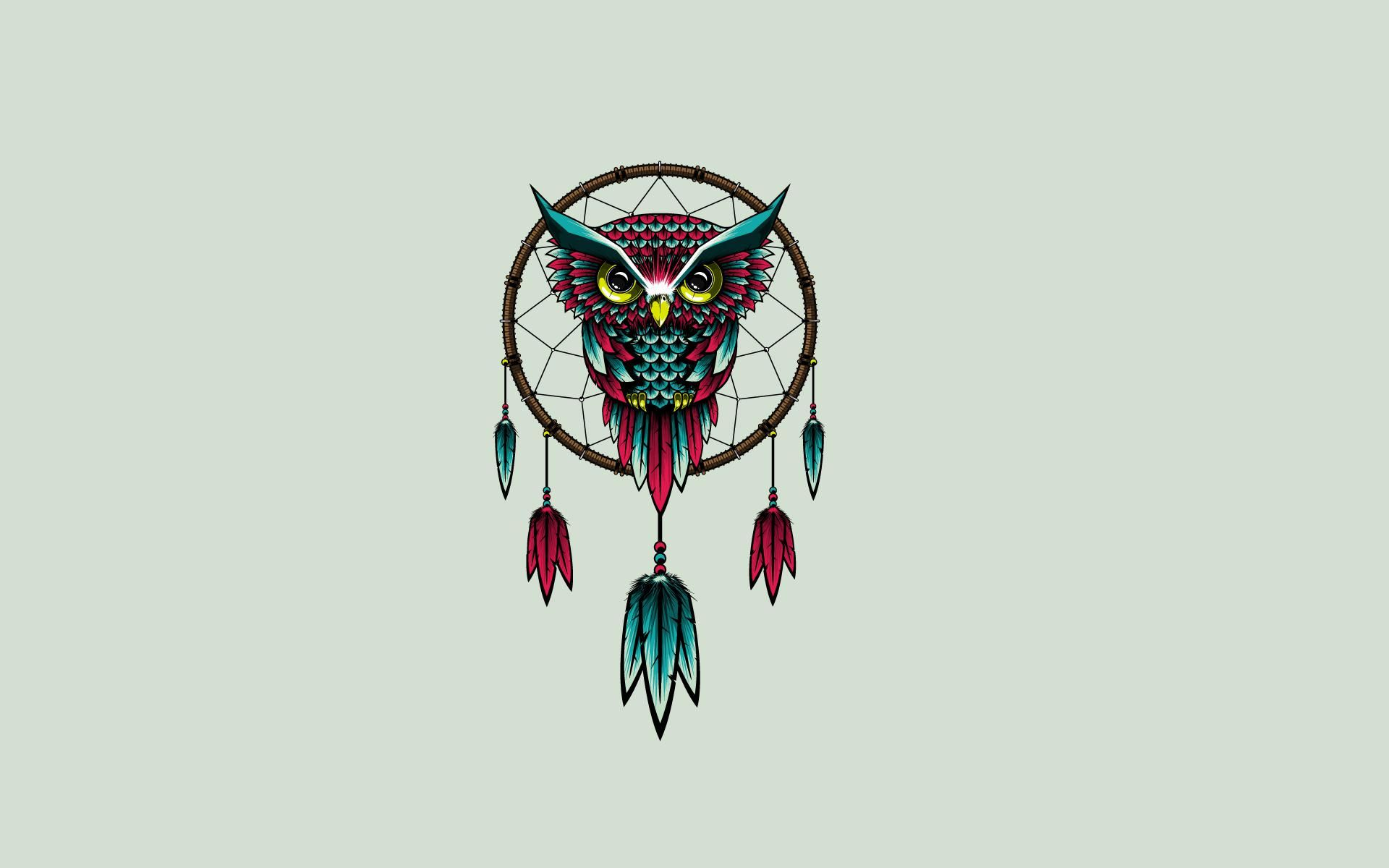 Owl Bird Dreamcatcher Art Hd Wallpaper Get It Now Cute Owls Wallpaper Owl Wallpaper Dreamcatcher Wallpaper