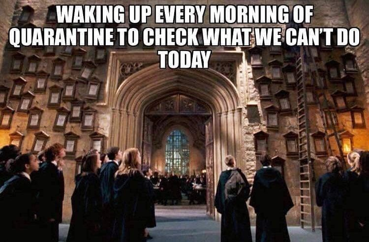 Pin By Mrs Badesso Teaches On Mrs Badesso Teaches Hogwarts Wizarding World Harry Potter Memes