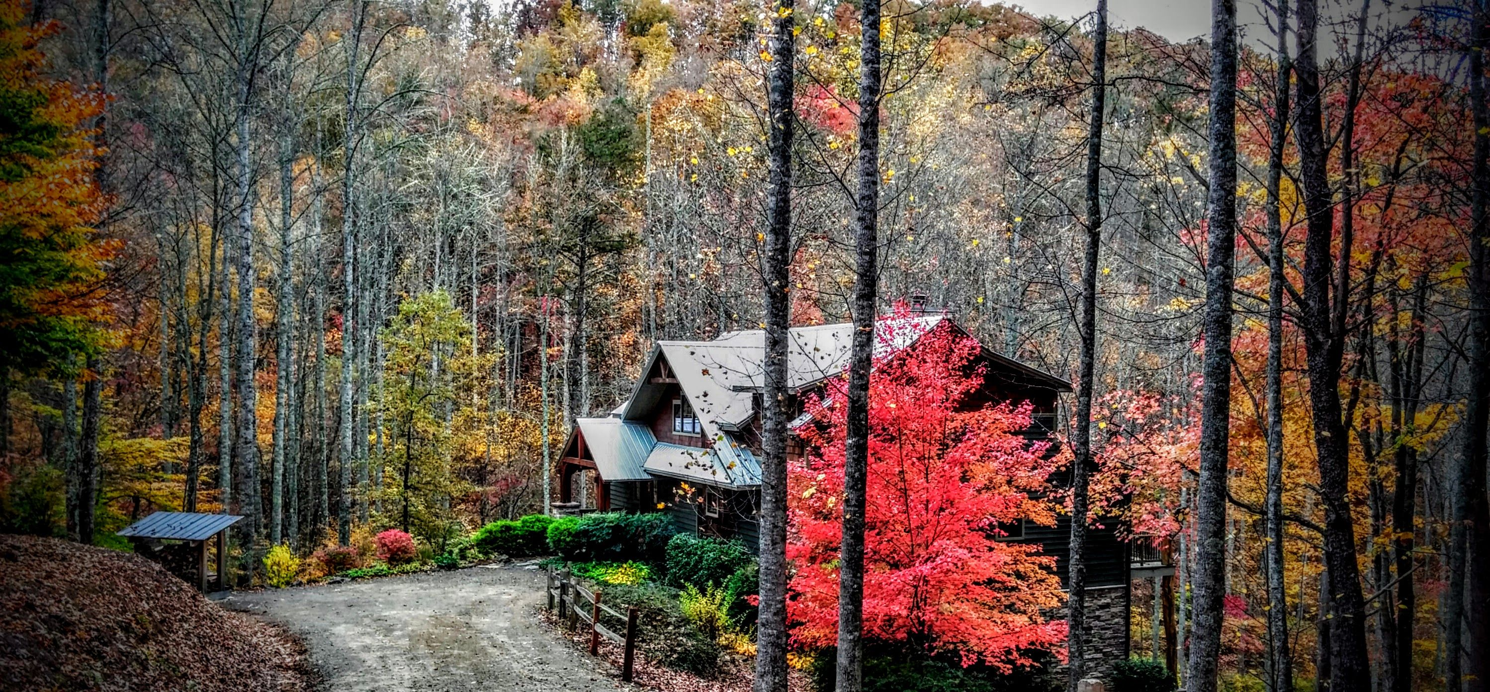 the a detail located unassuming luxurious on mountain log rental preserve cabins center yet of in cabin is id home directory foothills equestrian bat north to diamond tryon carolina cave falls nestled international