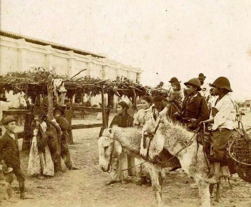 Provincia de salta 1900