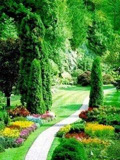 Download Free Green Garden Mobile Wallpaper Contributed By Gaylewe Green Garden Mobile Wallpaper Is Beautiful Flowers Garden Garden Pictures Beautiful Gardens