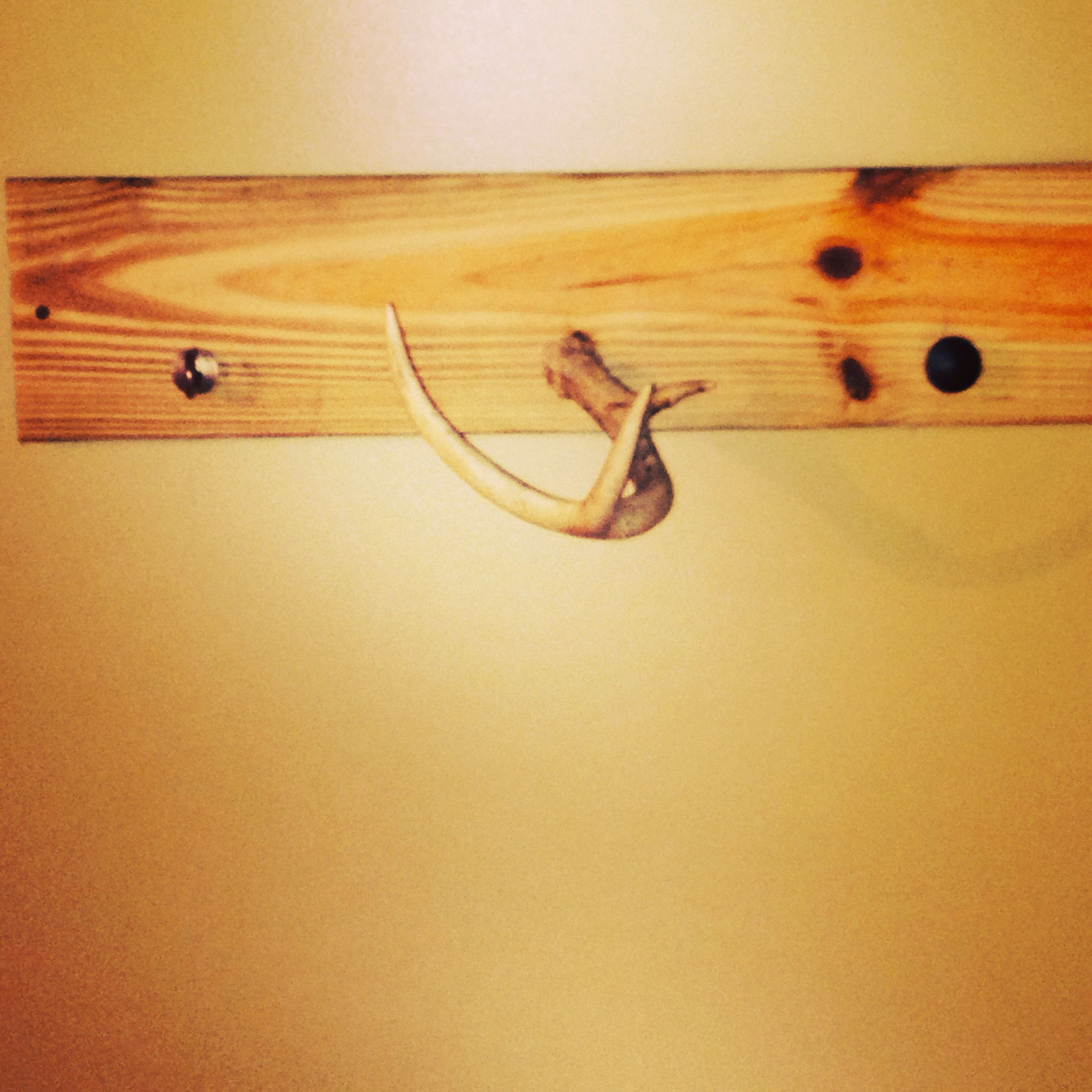 Hat and belt rack made with deer antler | Arts and crafts ...