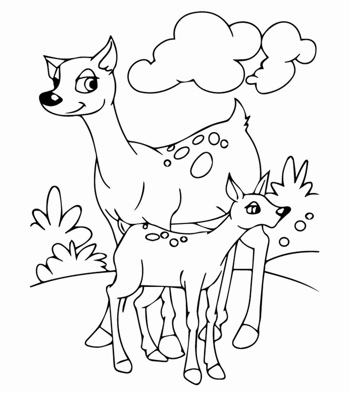 Coloring Page Of Animals In 2020 With Images Lion Coloring