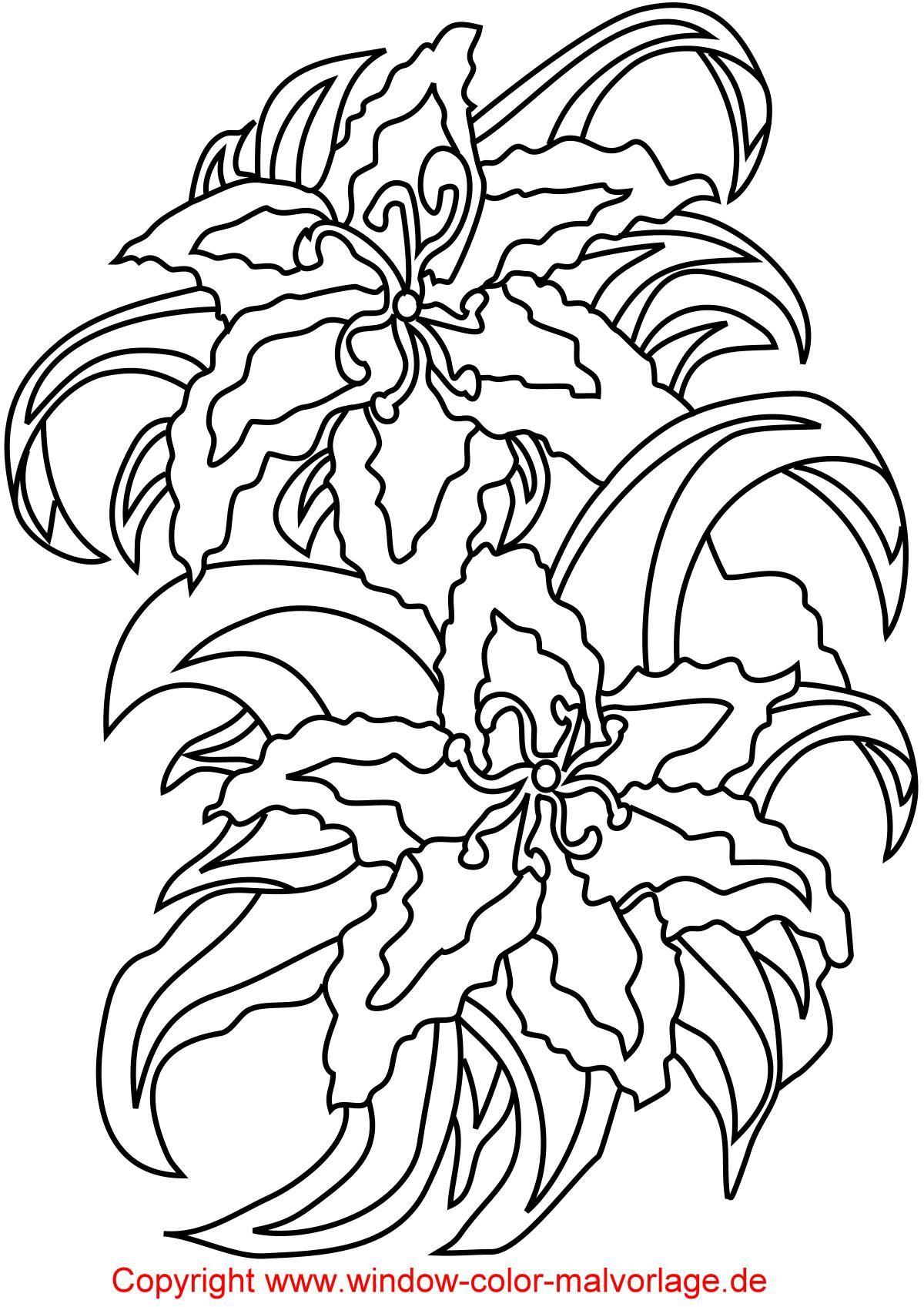 Malvorlagen kirschen pictures to pin on pinterest - Malvorlagen Zum Ausdrucken Schoene Blumen Und Blueten Malvorlage