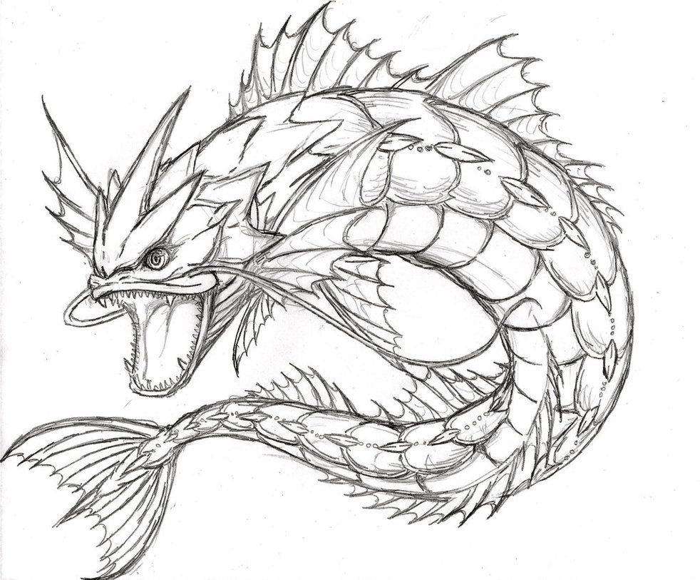 Pokemon For Real Gyarados By Xxd17 Deviantart Com On Deviantart Pokemon Pokemon Coloring Pages Pokemon Coloring