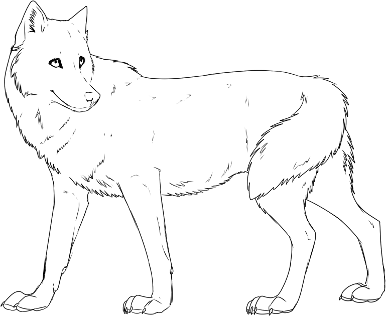 Free Printable Wolf Coloring Pages Lauren Color Pages