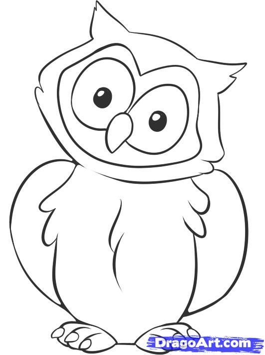 How To Draw A Owl By Dawn Owl Drawing Simple Owls Drawing Easy